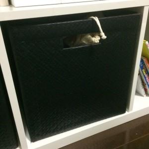 IKEA収納ボックス