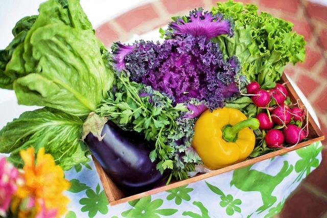 【ふるさと納税】宮崎県綾町の野菜定期便を頼んでみました