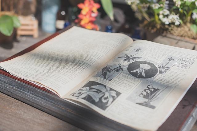 0歳から図鑑を買おう!頭がいい子のリビングにある三種の神器:図鑑・地図・辞書