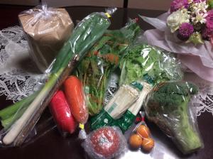 綾町のふるさと納税無農薬野菜